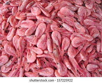 Royalty Free Pink Shrimp Images Stock Photos Vectors Shutterstock