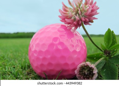 Pink golf ball and flower on the grass. Golf background