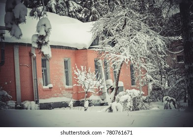 Pink house covered with snow in winter forest