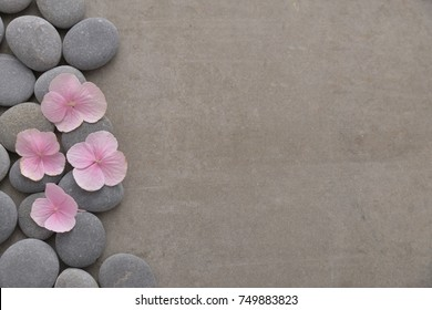 Pink hydrangea petals with pile of gray stones on gray background
