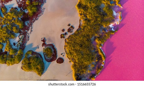 Pink lake Syvash in Ukraine on the border with Crimea