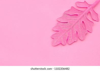 Pink leaf on paper background. Fashion minimal pop art style.