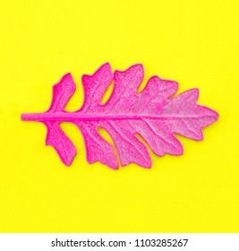 Pink leaf on yellow paper background. Fashion minimal pop art style.