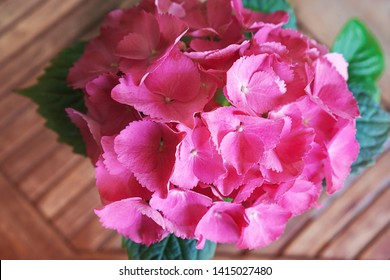 Pink, lilac, purple hydrangea flower (Hydrangea macrophylla) or hortensia flower blooming on wooden table background. Beautiful bush of hortensia flowers. Flat lay, top view, close-up.