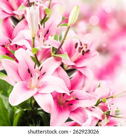 Pink Lilies Flowers Bouquet, Beautiful, Delicate and Scented Flowers