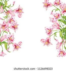 Pink lilly flowers border on white background. Hand drawn watercolor illustration.