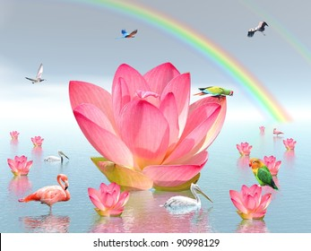 Pink lily flowers on water , under rainbow and surrounded by many birds by beautiful weather