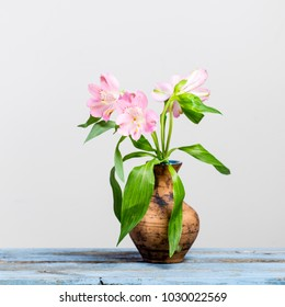 Pink Lily in a vase urn on wooden table and white background