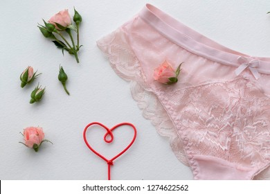 Pink lingerie panty. Fashion cloth, lingerie. Concept of love.