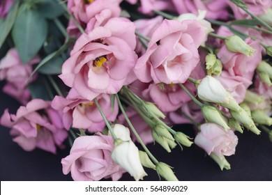 Pink Lisianthus flower decoration.