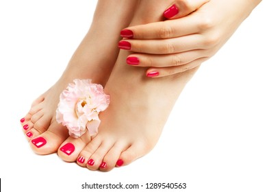 Pink manicure and pedicure with flower close up, isolated on white background