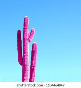 Pink neon cactus on a blue gradient background. Minimal fashion design concept.