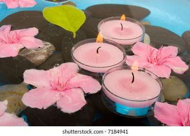 Pink oleander flowers floating on water