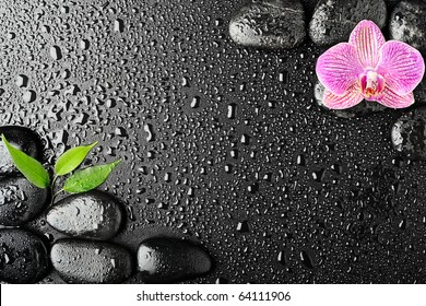 Pink orchid and basalt stones on the black background