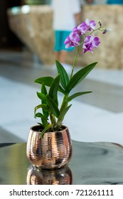 Pink orchid in copper color vase. Decoration of living room with purple flower.