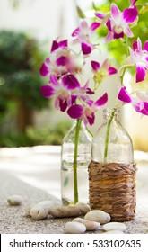 Pink orchid in a glass bottle. Wicker bottle. Blue Pool.