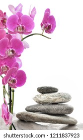 pink orchid and pebbles stacked isolated on white background