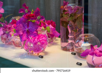 Pink Orchid in an unusual vase