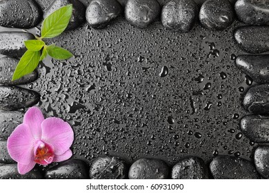 Pink orchid and zen stones on the black background