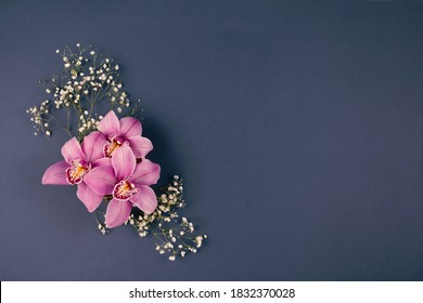 Pink orchids with white flowers, on grey background with copyspace - minimalistic floral composition for greeting card mockup. Holidays, birthday, Mother Day or International Women's Day celebration