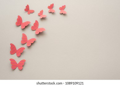Pink paper butterflies on a grey surface. Spring concept.
