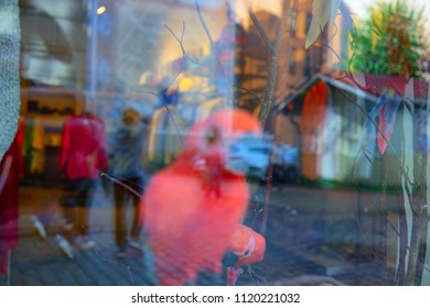 A pink parrot behind a showcase with reflection