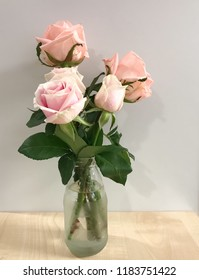Pink pastel rose in glass vase on white background