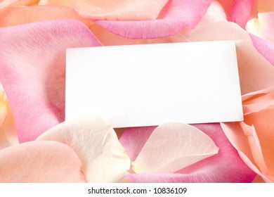 Pink and peach rose petals support a white business card.