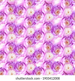 Pink peonies flowers background. Photo collage seamless pattern for festive design.