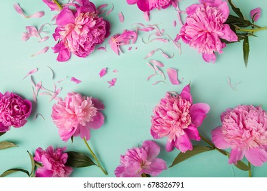 Pink peonies on a turquoise background.