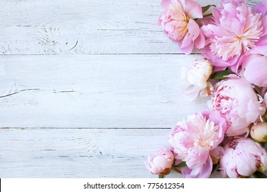 Pink Wood Background Images Stock Photos Vectors