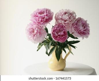 Pink peonies in vase.