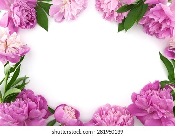 Pink peony flower on white background with copy space for greeting message. Mother's Day and spring background concept