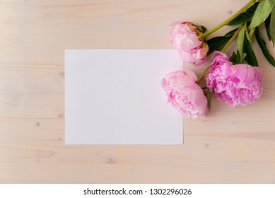 pink peony flowers on white wood background with copy space