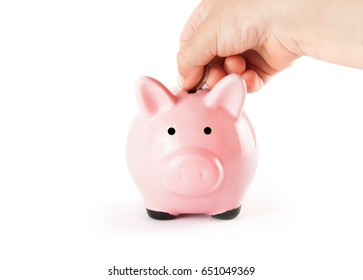 Pink pig and coins isolated on white background