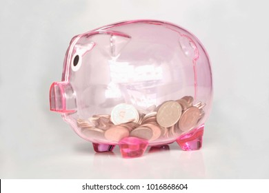 Pink piggy bank with coins. saving.