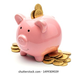 Pink piggy bank full of gold coins isolated on a white background. Concept of where to invest your savings. Much money