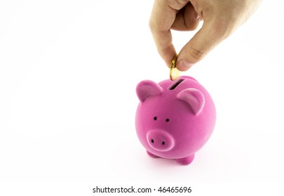 Pink piggy bank and hand with coin