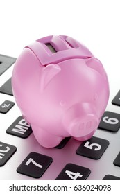 Pink piggy bank on calculator savings business concept