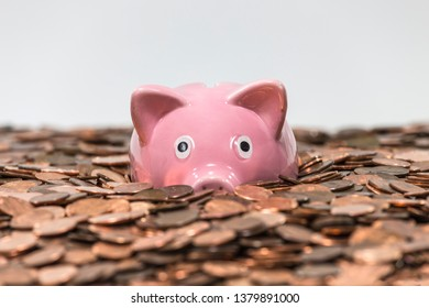 Pink piggy bank swimming in copper pennies.
