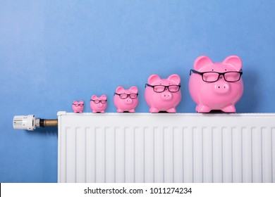 Pink Piggy Banks Wearing Eyeglasses Kept In A Row On Radiator