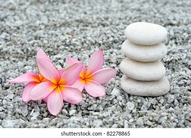 Pink plumeria and pebbles