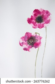 Pink poppy flowers on white ; Watercolor painting