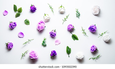 Pink and purple heads of rose flowers scattered on a white table. Flatt layout.
