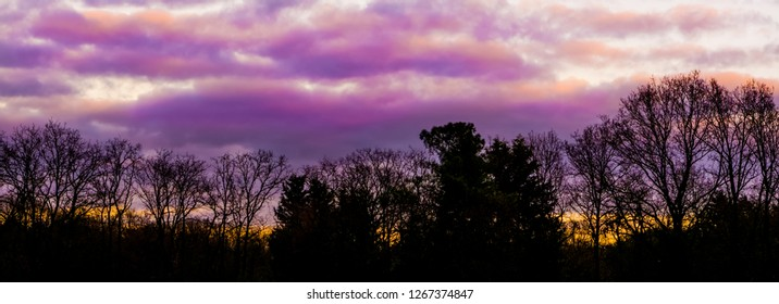 pink and purple polar stratospheric clouds in a forest landscape, a weather phenomenon that rarely occurs in winter, beautiful nature background