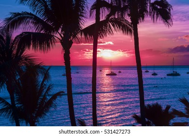 Pink and purple sunset over a sailboat filed cove on tropical island with silhouetted palm trees.