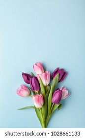 Pink and purple tulip flowers bouquet on blue background. Flat lay, top view.