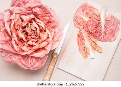 Pink radicchio del Veneto copy space.