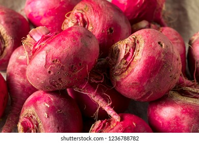 Pink and Red Beet Roots Ready to Cook