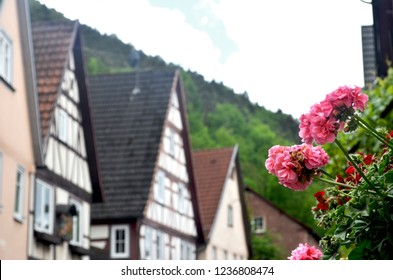 Pink and red geraniums frame a view of traditional Austrian houses. They have wooden lattice work, and sloping roofs. Behind them is a hill covered with green trees, and a cloudy blue sky.